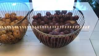 Crystal Admiral Resort Suites Spa 5 обзор отеля 2020 Завтрак в отеле Турция Сиде