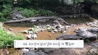 서울근교 천진암 계곡 무료주차 vs 종일권 만원 주차 …