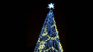Новогодняя ночь на Дворцовой площади!