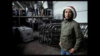 Bob Marley por David Burnett
