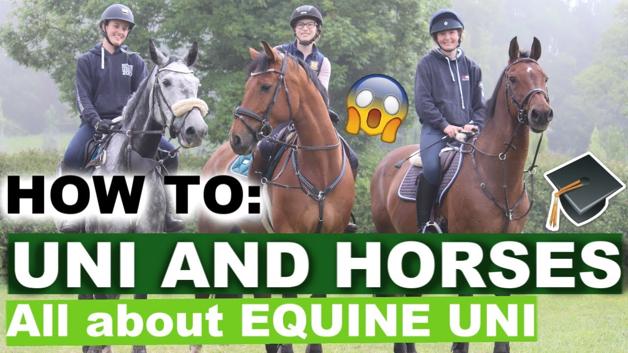 Taking your HORSE to UNIVERSITY? | Hartpury Equine Uni | Ride Every Stride