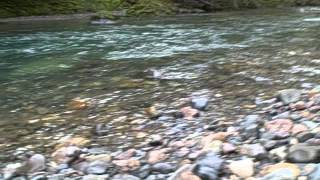 Rock Hounding by Trout Creek Campground
