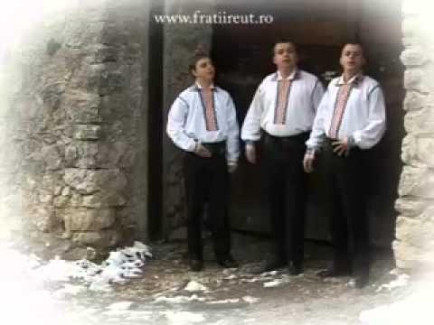 Fratii Reut - La poarta la Stefan Voda