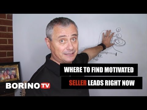 Where To Find Motivated Seller Leads RIGHT NOW 🏡 Borino Coaching