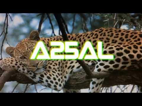 A25AL Alessandro IW5ELA dal Botswana