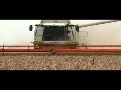 CLAAS LEXION 580 World Record / 2008