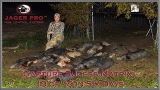 Hog Trapping | (22) 19/19 Feral Hogs Removed Using Capture Success Matrix™  | JAGER PRO™