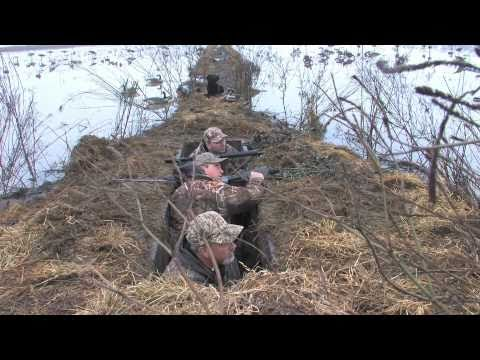 Sacramento Valley Duck Hunting With RH Guide Service