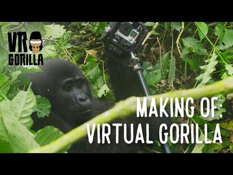 The Making Of 'Virtual Gorilla' in Uganda