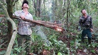 SINH TỒN TRONG RỪNG TÂY BẮC | Săn Bắt Hái Lượm Trong rừng (tập 2) ✦ Hoa Ban Tây Bắc