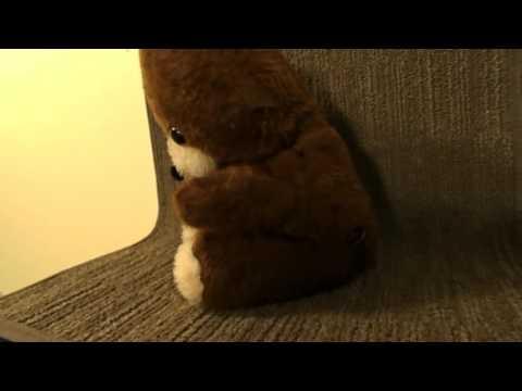 Plush vintage brown bear music box brahams lullaby 1