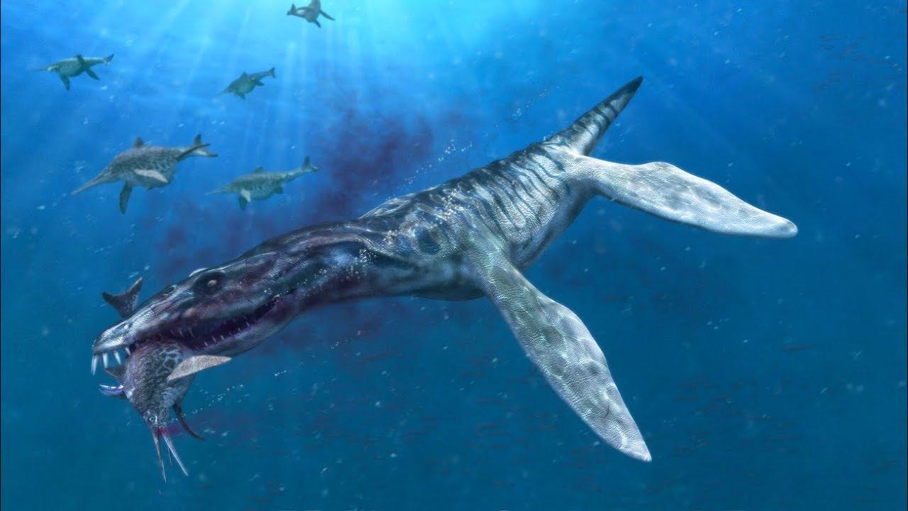 Liopleurodon - jurajski zabójca z głębin - YouTube  Liopleurodon - ...