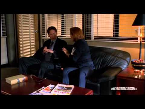 X-Files - Mulder/Scully - What About Everything - YouTube
