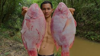 Yummy Red Fish Recipe - Cooking Red Fish In The Forest Eating Delicious