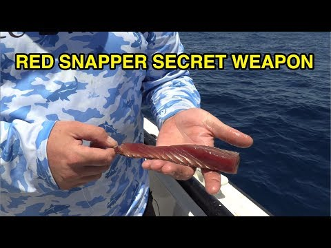 Red Snapper Secret Weapon [BEST BAIT]