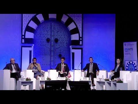 WTIS-17 Plenary Session 4: New data needs for the digital economy
