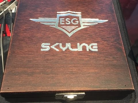 ESG Skyline Review