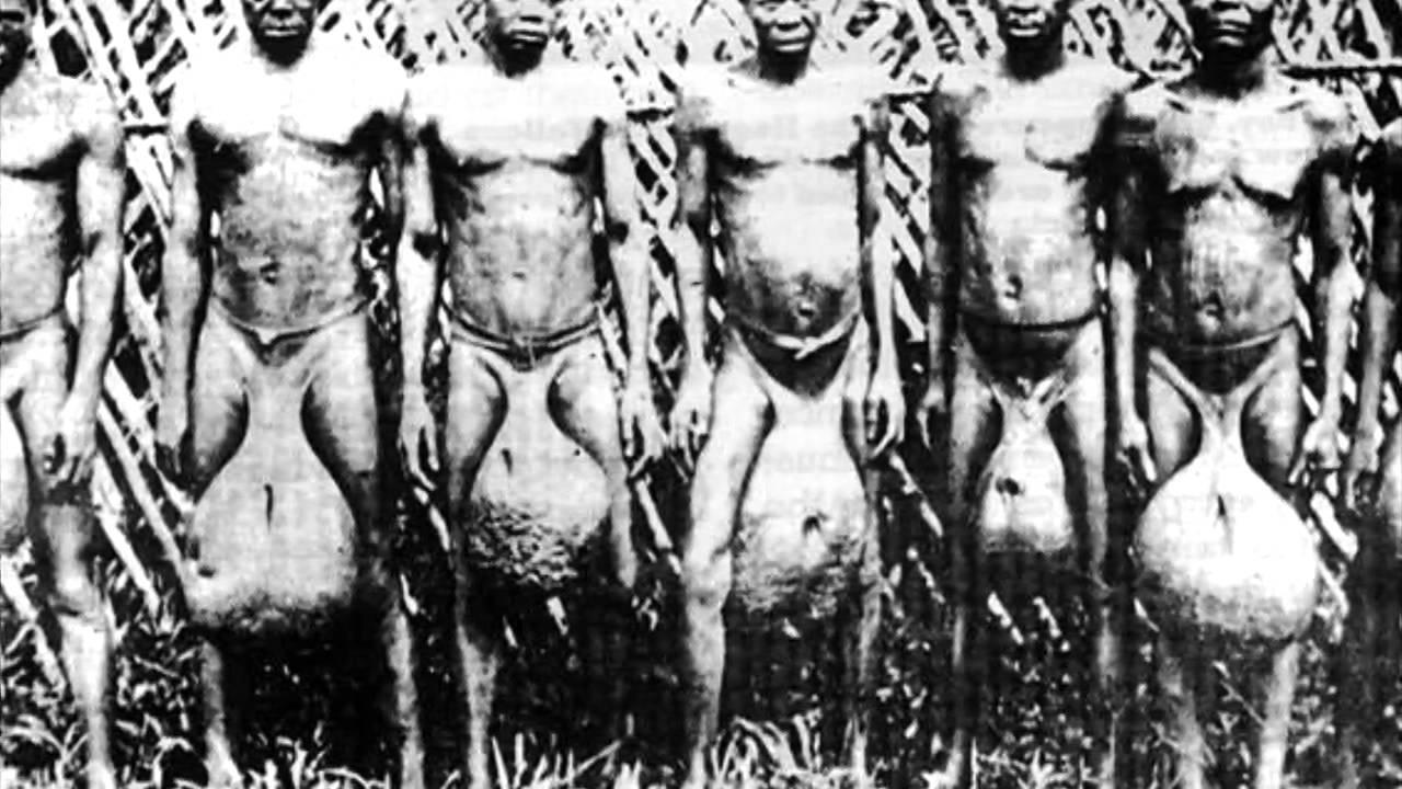 племя бубал фото мужчин сообщают
