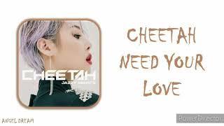 CHEETAH (치타)