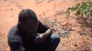 A Zimbabwean Exodus - 12 July 2007