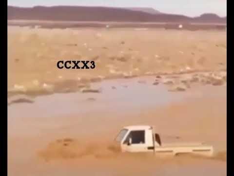 شاص يقطع السيل الشاص سيول سيل فيضانات سيول جارفه Youtube