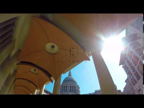St Paul's Cathedral From London Stock Exchange Ceiling