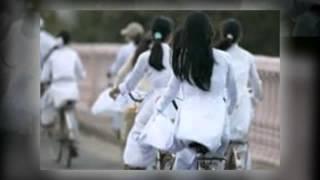 Nhac Viet Nam | Bai hat de thuong nhat cua tuoi hoc tro , Ao Trang Xa Roi | Bai hat de thuong nhat cua tuoi hoc tro , Ao Trang Xa Roi
