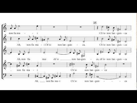 Carlo Gesualdo - Sesto libro di madrigali: VI.
