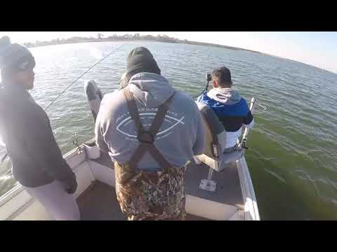 Monster Crappie On Lake Lewisville