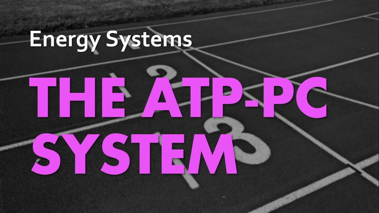 A&P Energy Systems 02 - The ATP-PC System - YouTube