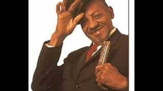 Sonny Boy Williamson & Animals - Nightime Is The Right Time