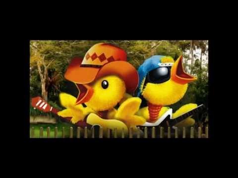 Pintinho Piu (ORIGINAL) Chick Pyu music Farm