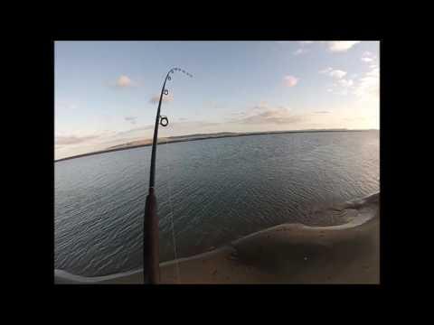 Muriwai Beach Fishing Kaipara Mouth Inlet - March 2017