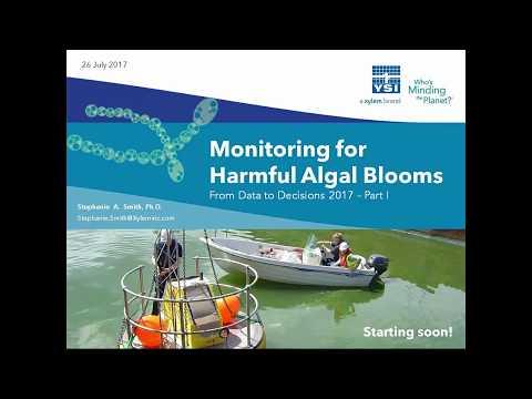 YSI Webinar | Monitoring For Harmful Algal Blooms