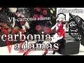 《プラモ》chitocerium VI-carbonia adamas(チトセリウム カーボニア アダマス)《Plastic Model:Age15+》