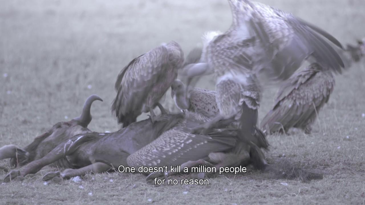 Film Trailer: Ptaki śpiewają wKigali / Birds Are Singing inKigali