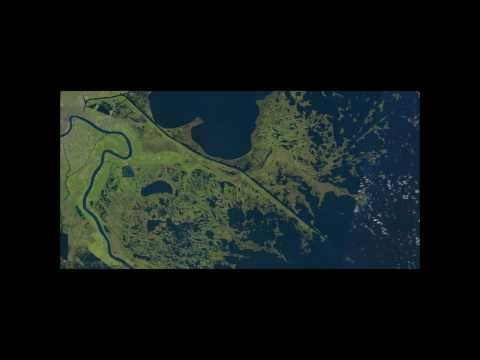 Caernarvon Freshwater Diversion Nutrient Damage to Marsh