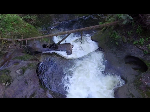 Aerial Drone Cliff Falls, Kanaka Creek Regional Park, Maple Ridge, B.C., Canada By RSamson