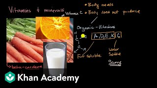 Overview of common vitamins and minerals that are important to human health. view more lessons or practice this subject at https://www.khanacademy.org/scienc...