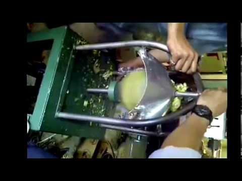 Jual mesin pemotong kelapa Thailand bentuk DIAMOND