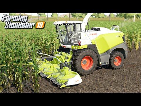 Koszenie kukurydzy na kiszonkę - Farming Simulator 19 | #62