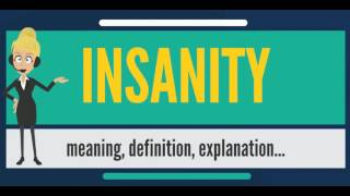 What is INSANITY? What does INSANITY mean? INSANITY meaning, definition & explanation