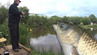 HUGE FISH! New Family Record! - Springwater Lakes South Wales - Fishing Family Challenge