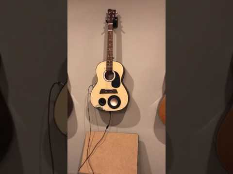 Guitar speaker!  Acoustic guitar sound test