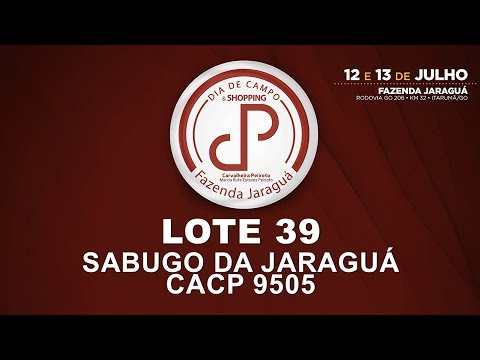 LOTE 39 (CACP 9505)