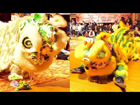 2017 Choy Cheng & Drunken Lion Dance - Calvin Chin Martial Arts Academy (Boston) 舞獅 Múa Lân Event