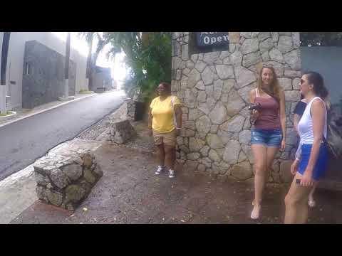 30-08-2017 -  Acapulco City Tour - Baby Turtle Release - Market - Divers - Mural - Tour by Van