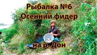 горох для рыбалки купить в казани