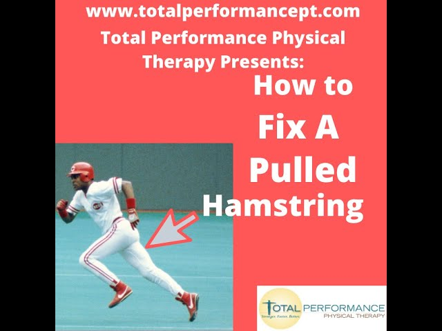 How to Fix a pulled Hamstring Total Performance Physical Therapy