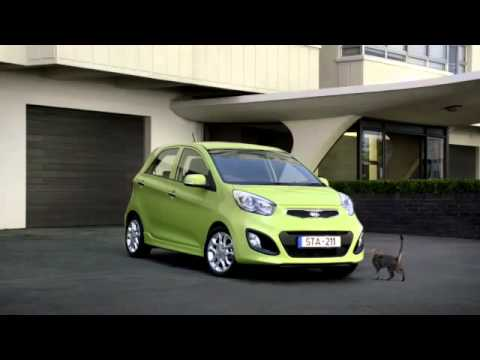 KIA advert - with cat and dog - YouTube